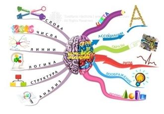 Почему обучение ментальной арифметике в Пифагорке лучше всего? Отзывы о центре